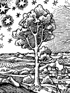 The tree in the Flammarion engraving